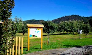 Salto di livello per il Centro regionale di Castanicoltura di Chiusa Pesio