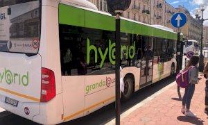 Disservizi limitati sul trasporto pubblico locale nella prima giornata con obbligo di Green Pass
