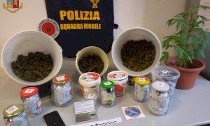 In casa aveva un chilo e mezzo di marijuana e un bilancino di precisione: arrestato un romeno