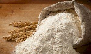 Coldiretti Cuneo spiega l'importanza della farina a km zero nella nostra dieta