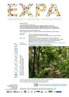 Il verdeggiare dei boschi