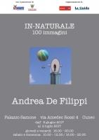 """Mostra fotografica di Andrea De Filippi """"In-naturale. 100 immagini."""""""