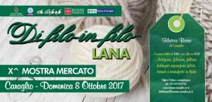 """Xª Mostra mercato """"Di filo in filo LANA"""""""
